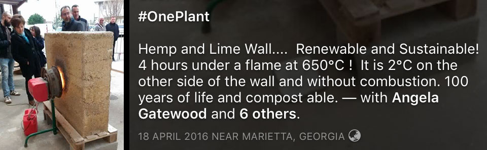 Hemp and lime wall flame test